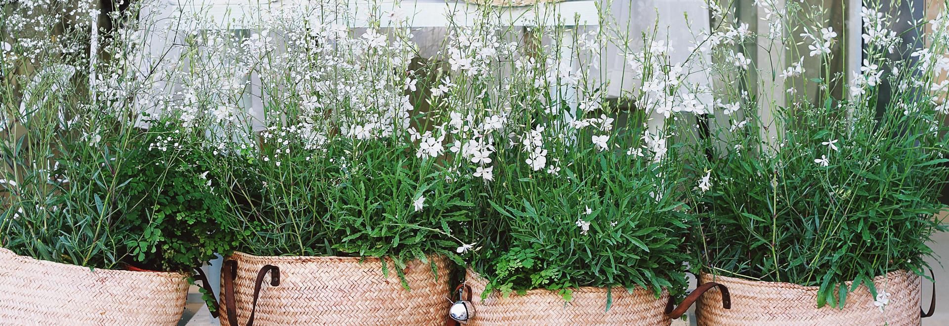 Gerofinance quelques id es pour bien d corer son balcon for Idee pour decorer son jardin